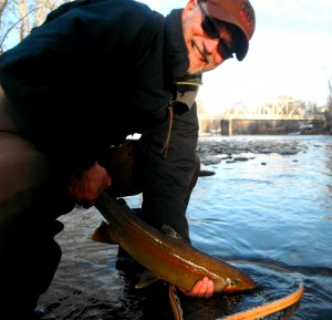 Peter S. with a nice early morning steel